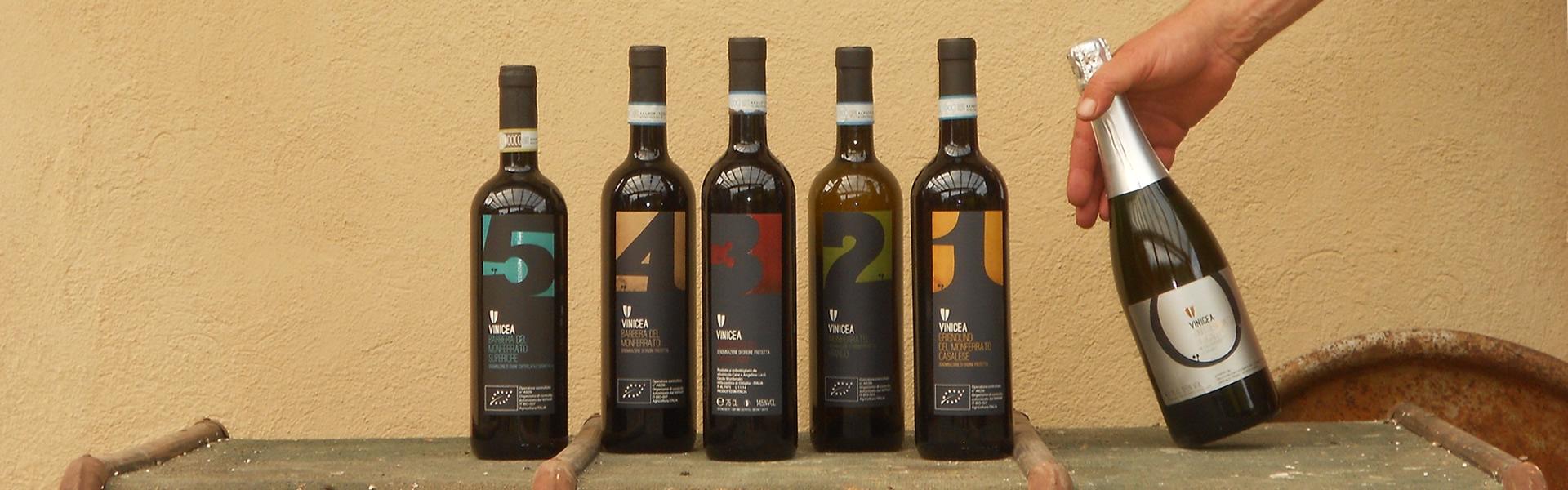 Produzione Vino - Casale Monferrato (AL)
